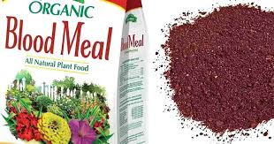 bone meal for dogs. Bone Meal For Garden And Dogs .