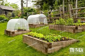 raised vegetable and herb garden beds