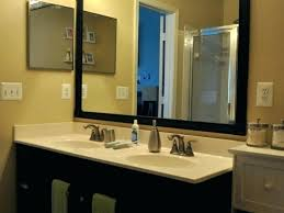 Beveled Vanity Mirror Amazing Beveled Bathroom Mirror And Animal