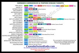 Terpene Temperature Chart Pin On Cannabis