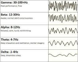 What Are Brainwaves Neuroscience Meditation