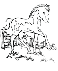 Free Horse Coloring Pages Mustang Wild Horse Coloring Page Free