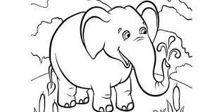 Disegni Da Stampare E Colorare Gratis Con Disegni Animali Da