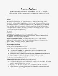 Sample Profile Resume Sample Cv Profile Resume Statements Admin Statement For Customer