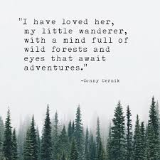 Love Adventure Quotes Cool Adventurer Q U O T S P O K E Pinte