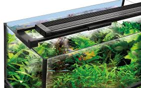 your desire to achieve attractive and latest models of led aquarium lighting