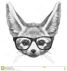 fennec fox drawing. Simple Fox Download Original Drawing Of Fennec Fox With Glasses Stock Illustration   Of Face For B