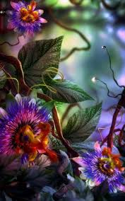 3D Flower Wallpapers FREE Pictures on ...