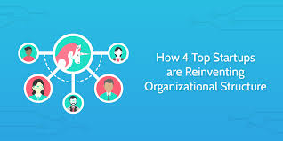 Think Cell Organization Chart How 4 Top Startups Are Reinventing Organizational Structure