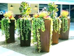 tall outdoor pots modern and planters best plants for plant garden sydney