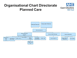 Bladder Chart Nhs Organisation Charts
