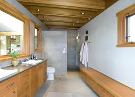 walk in shower lighting. No Door Shower Design Walk In Designs Bathroom Contemporary With Bench Lighting