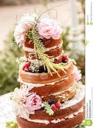 Naked Wedding Cake Stock Photo Image Of Frosting Covered 46817164