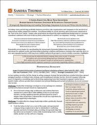 Ceo Resume Examples Enchanting Executive Resume Examples
