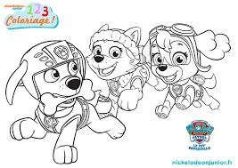 Free Coloring Pictures Paw Patrolllllllll