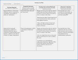nursing care plan template blank nursing care plan template pdf best templates
