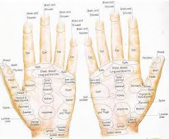 Reflexology Pressure Points Chart Reflexology Pressure Point Chart The Ear And Related