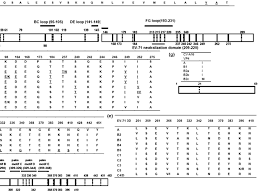 Genetic Changes In Ev 71 And Cv A16 Comparison Of Vp1 Amino Acid