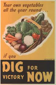 Wartime Kitchen Garden Dvd 17 Best Images About Grow Food Not Lawns On Pinterest Gardens