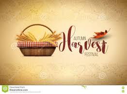 Harvest Design Magdalene Project Org