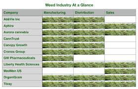 The Blooming Weed Industry Thinknum Media