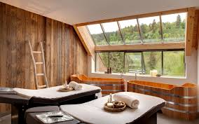 List of Features to consider when building new home. 1. Home Spa: Image  Source