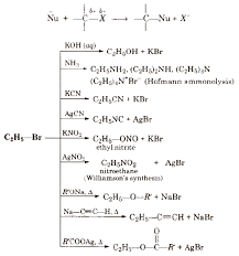kcn is predominantly ionic and provides cyanide ions in solution which is ambident nucleophile and bind with carbon side to form as the major
