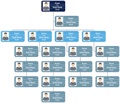 Ryanair Organisational Structure Chart Advantages And Disadvantages Of Hierarchical Organisational