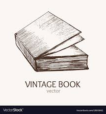 vine book hand draw sketch card vector image