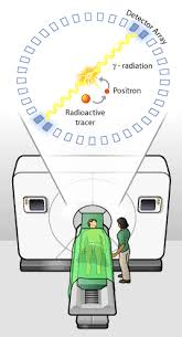 how a pet scan works how does a pet scan work pet scans