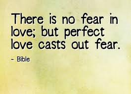 Perfect Love Quotes Magnificent The Best 48 Perfect Love Quotes ANNPortal