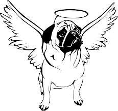 Angel Pug Original Jpg 1 280
