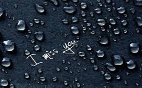 i miss you wallpapers id 505253904