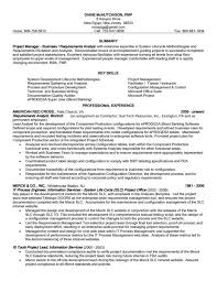 Resume Format For Banking Professional 1080 Player