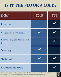 Difference Between Cold And Flu Chart Cold Or Flu Checklist