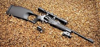 Продление разрешения на нарезное оружие Клуб Оружейник Продление разрешения на нарезное оружие
