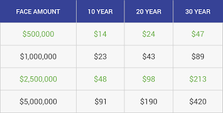 Term Life Insurance Rate Comparison Chart Metlife Life Insurance In 2019 A Comprehensive Review
