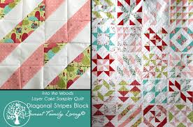 Diagonal Stripes Block | Into the Woods Laker Cake Sampler Quilt ... & In today's block of the layer cake sampler, we simply turning our half  square triangles 180 degrees, and set them up to be diagonal stripes. Adamdwight.com