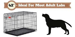 Kong Crate Size Chart Best Dog Crates Type To Get Complete Guide Of Lab Cages 2019