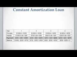 Loan Amortizer Lesson 11 Video 3 Constant Amortization Loan