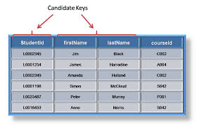 Relational Databases Example Standard Query Language