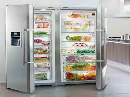 full size refrigerator without freezer. Brilliant Without Appliances U0026 GadgetFull Size Refrigerator And Freezer Full  With The Vegeteble Inside Without E