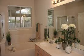 Bathroom Staging Vacant Staging Austin Simple Staging Home Staging Austin