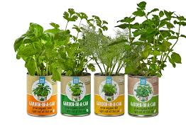this cute garden in a can kit keeps me in homegrown cilantro basil sage and dill all winter package it with prepara s herb savor a small storage