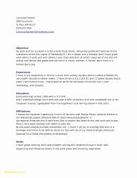 Delivery Driver Resume Examples Legalsocialmobilitypartnership Com