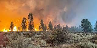 Oregon wildfires: Fire in Tillamook ...
