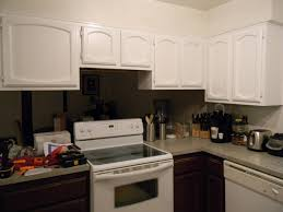 Rustoleum Kitchen Transformations Reviews Interior Appealing Rustoleum Cabinet Transformation Reviews For