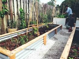 corrugated metal raised garden beds. Corrugated Raised Garden Beds Full Image For Metal Plans R