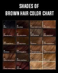 Shades Of Brown Color Chart Shades Of Brown Hair Color