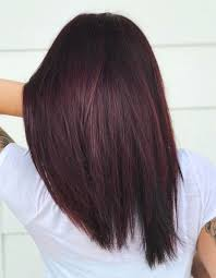 Shades Of Red Hair Color Chart 13 Burgundy Hair Color Shades For Indian Skin Tones